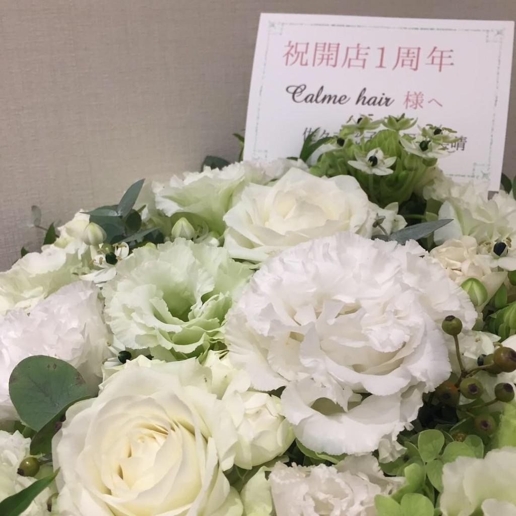 祝! 1周年!! |白楽駅 美容室Calme(カルム)